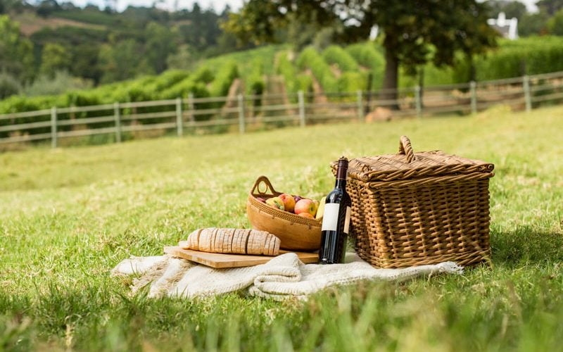 picnic-it-003